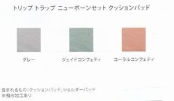 IMG_20190317_0008 クッションパッド.jpg